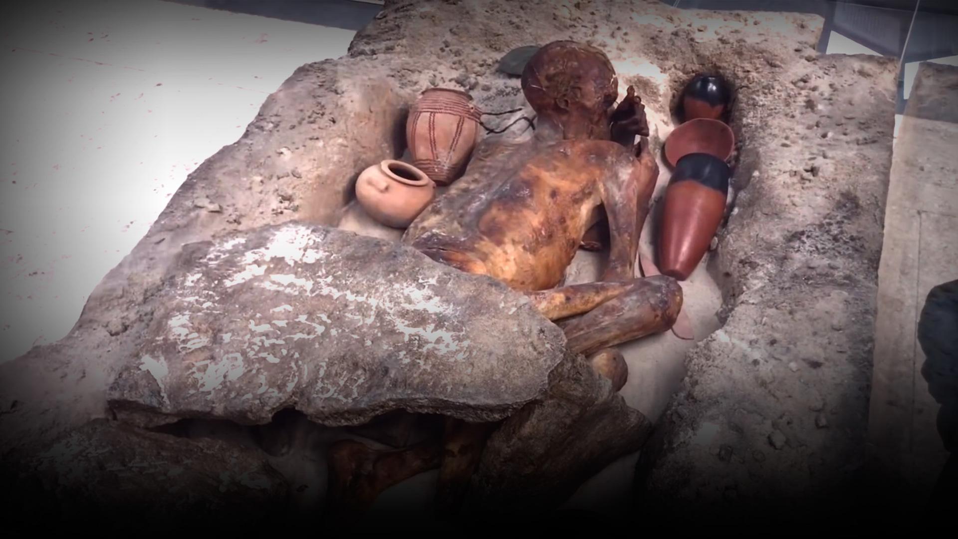 Тело Фараона, выставленное в Британском музее