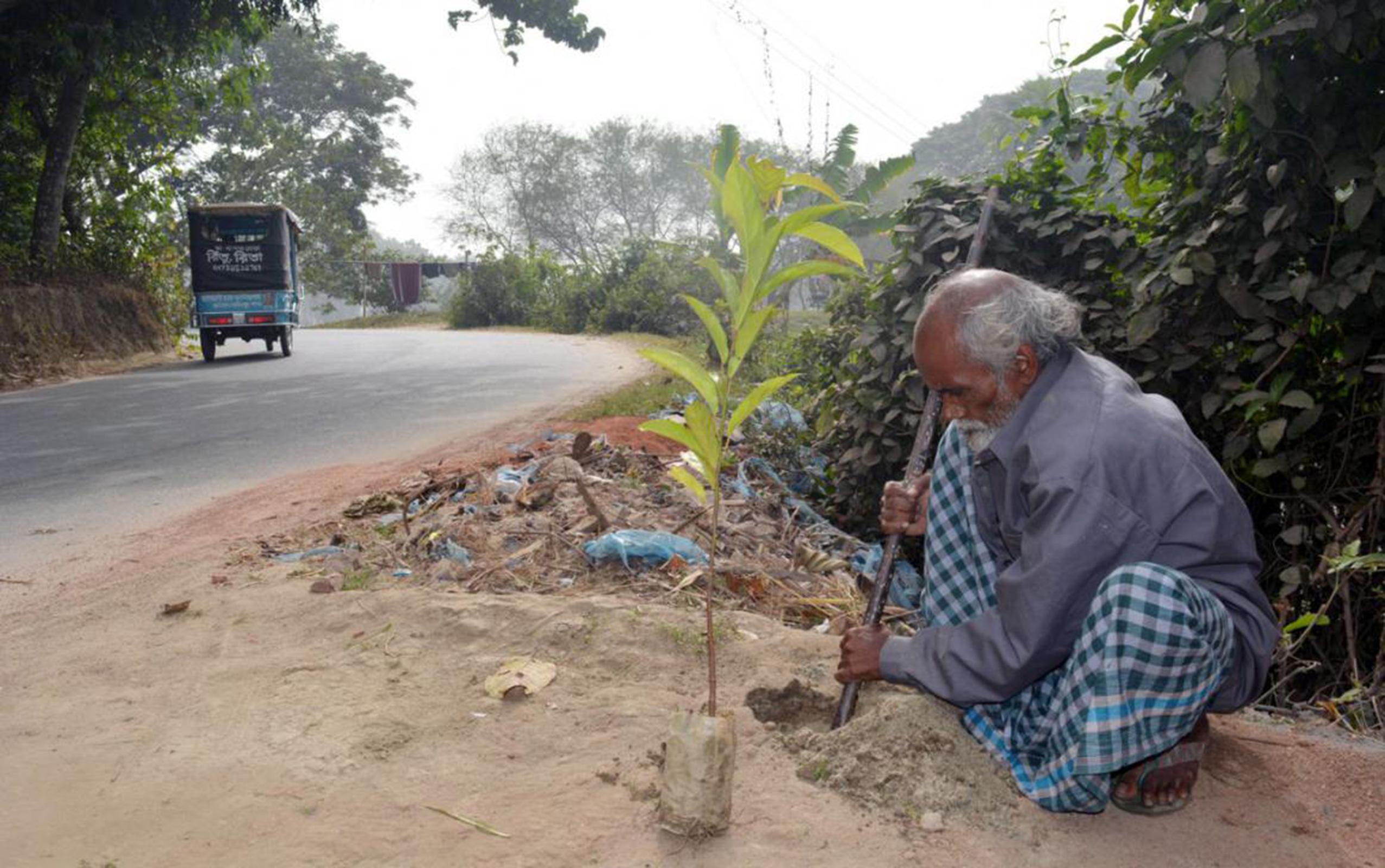 Абдул Самад Шейх посадил более 17 000 деревьев