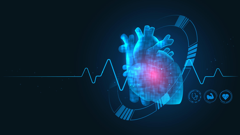 Мусульманка создала сердце